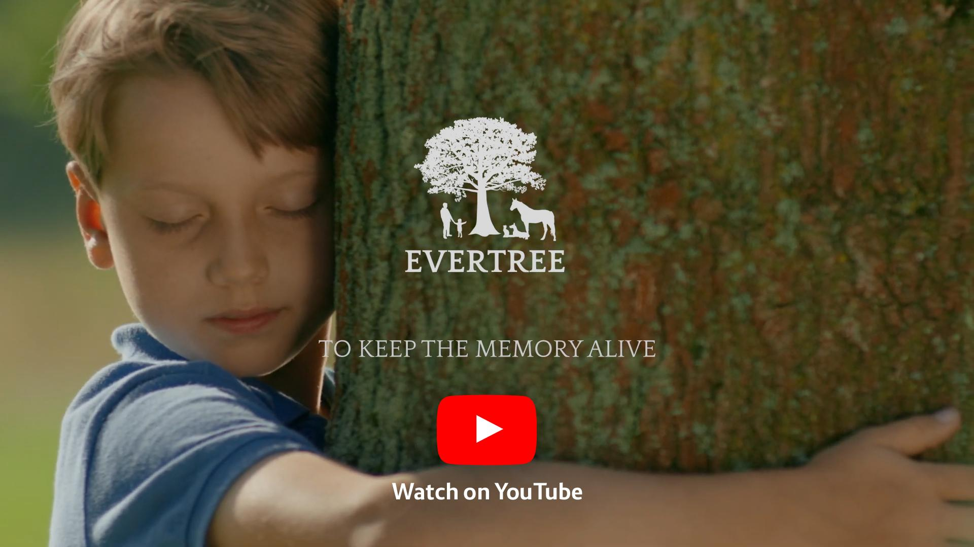 EVERTREE Video - Watch on YouTube